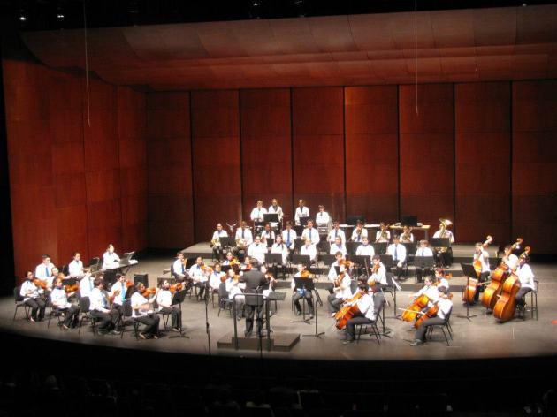 Orquesta Sinfónica Juvenil Santo Domingo 1